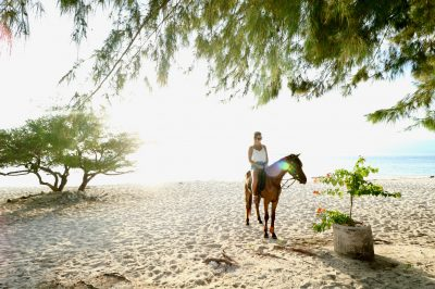 Need To Know What To Do On Gili Meno? Saddle Up & Explore